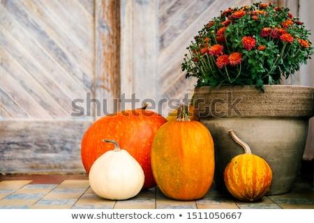 Porte étapes halloween décorations Photo stock © hraska