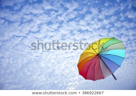 Golden shield against a blue sky Stock photo © Farina6000