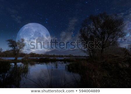 Maanlicht Oekraïne skyline volle maan hemel stad Stockfoto © joyr