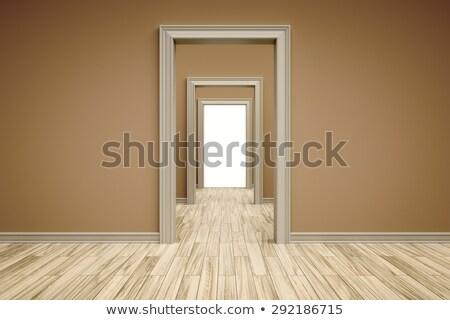 Tres puertas pasillo ilustración pared Foto stock © bluering