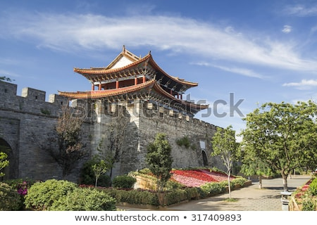 Ancient town of Dali China Stock photo © bbbar