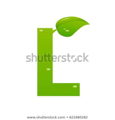 Groene eco letter l vector voorjaar schrijven Stockfoto © nezezon
