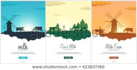 Set of Poster Milk natural product. Rural landscape with mill and cows. Dawn in the village. Stock photo © Leo_Edition