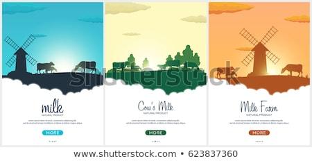 vacas · vários · diferente · humor · cores · touro - foto stock © leo_edition