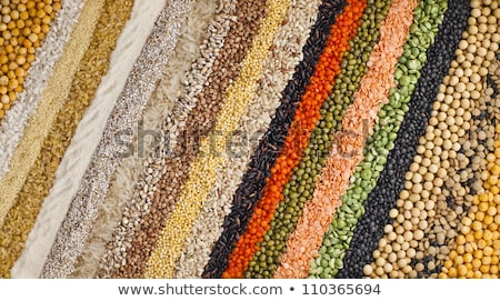 Variety of agricultural crop seed as background Stock photo © stevanovicigor