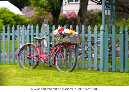 Beautiful bicycle with flowers in a basket stands on the street Stock photo © vlad_star