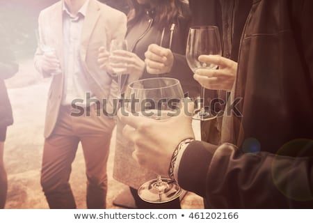 People at a cocktail party,  sunset Stock photo © IS2