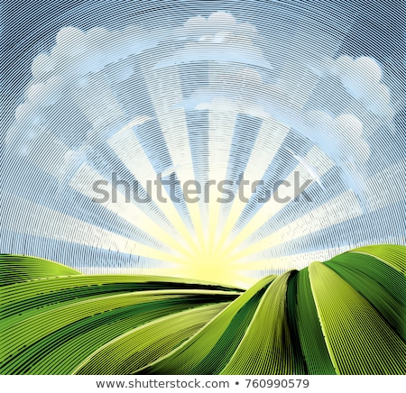 Fields Rolling Hills and Sun Engraved Etching Stock photo © Krisdog