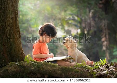 little asian schoolboy reading a book stock photo © rastudio