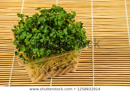 Some fresh cress Stock photo © IS2