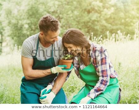jardinería · mujer · Pareja · jardín · persona - foto stock © is2