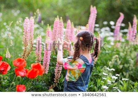Kid Girl Flower Dress Stock photo © lenm