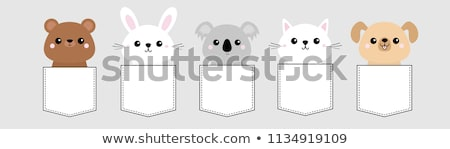 Cute baby animals in a pocket, vector set Stock photo © beaubelle