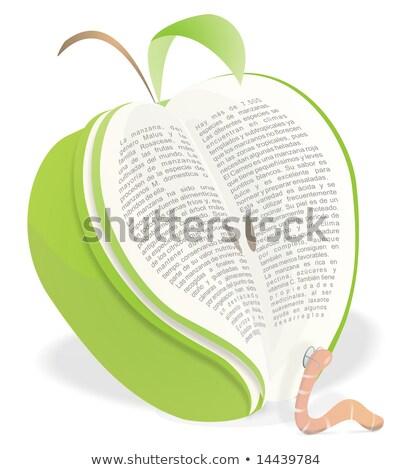Bildung Apfel Wurm Alphabet Illustration Regenwurm Stock foto © lenm
