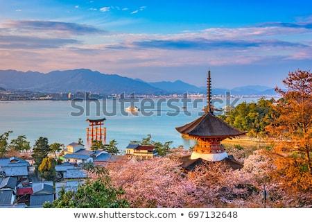 japonês · portão · laranja · preto · isolado · branco - foto stock © boggy