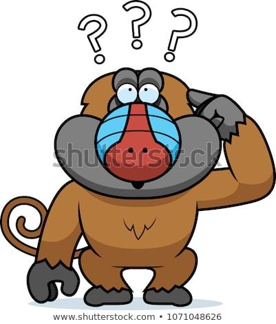 Desenho animado estúpido babuíno ilustração cabeça gráfico Foto stock © cthoman