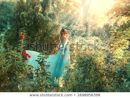 Blauw fairy blij gezicht illustratie glimlach gelukkig Stockfoto © colematt