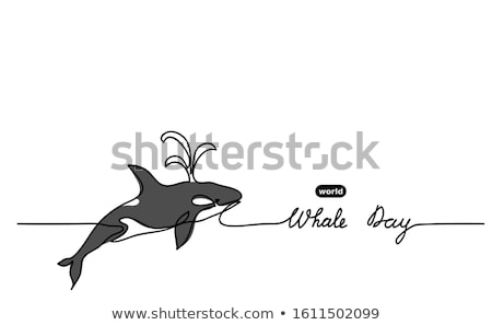 doodle animal outline of killer whale stock photo © colematt
