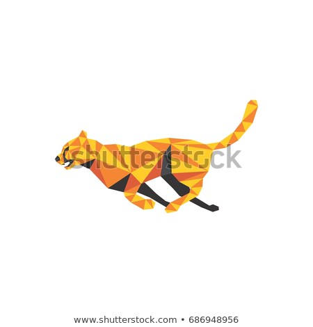 Cheetah Head Low Polygon Style Stock photo © patrimonio