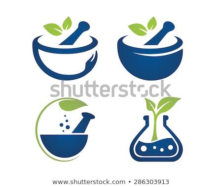 vector set of mortar and pestle Stock photo © olllikeballoon