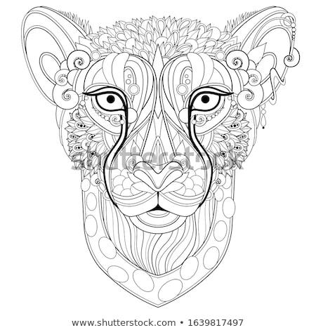Díszes dekoratív vadállat fej firka stílus Stock fotó © lissantee