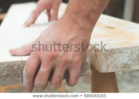 Carpenter holding a plane. Stock photo © vystek