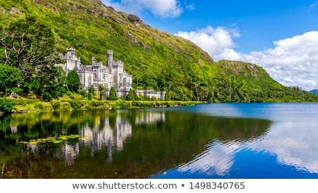 Manastır İrlanda manastır kale su Bina Stok fotoğraf © borisb17