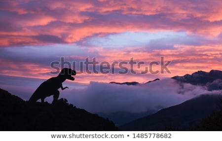 Gündoğumu gökyüzü gün batımı manzara deniz ağız Stok fotoğraf © Harveysart