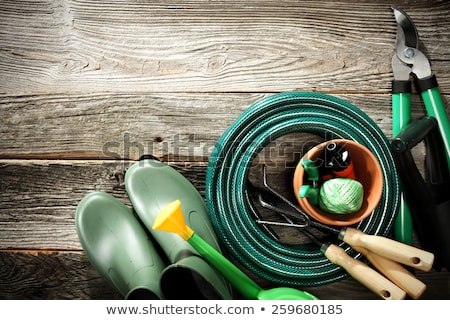 garden tools with grass on wood background stock photo © sandralise