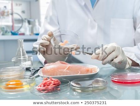 Inspecting microbes Stock photo © iko