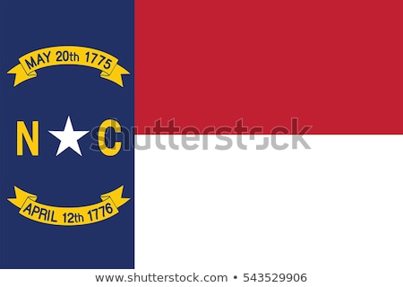North Carolina vlag groot illustratie USA banner Stockfoto © tony4urban