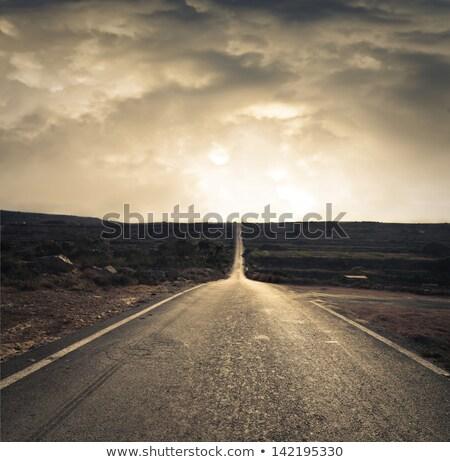 прямой · асфальт · дороги · ведущий · расстояние · лес - Сток-фото © filmstroem