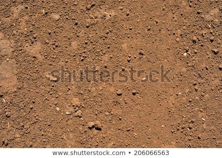száraz · sár · textúra · globális · felmelegedés · sivatag · törött - stock fotó © chris2766