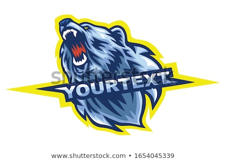 Polar Bear Mascot Head Vector Cartoon Stock photo © chromaco