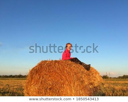 Szőke lány szénaboglya tiszta levegő égbolt Stock fotó © OleksandrO
