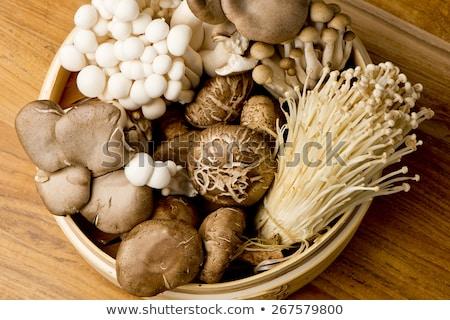 gombák · szett · fehér · gomba - stock fotó © toaster