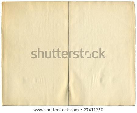 Kettő oldalak klasszikus könyv izolált fehér Stock fotó © latent