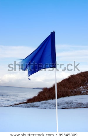 Foto d'archivio: Golf Course Green With Snow Drifts And Blue Flag