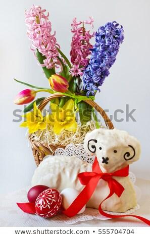 primavera · cordeiro · recém-nascido · feno - foto stock © artush
