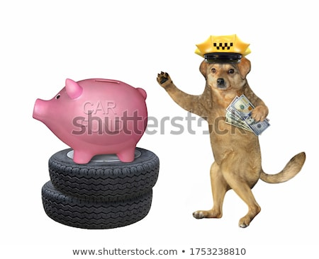 cap on the stack of dollars stock photo © 4designersart