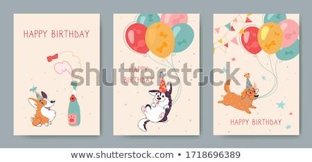 vicces · születésnapi · üdvözlet · zöld · fű · virágok · buli · boldog - stock fotó © balasoiu