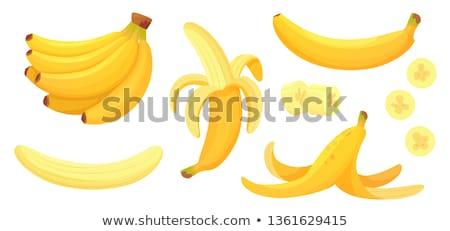 Banaan illustratie bananen voedsel witte Geel Stockfoto © Krisdog