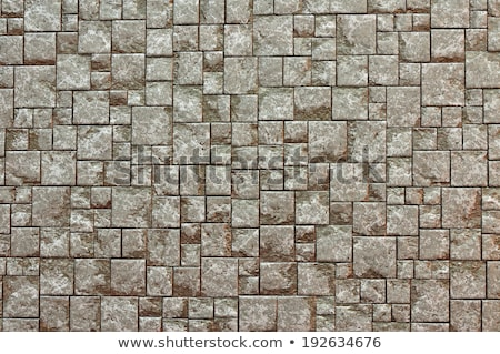 Gray Square Pavement. Seamless Tileable Texture. Stock photo © tashatuvango