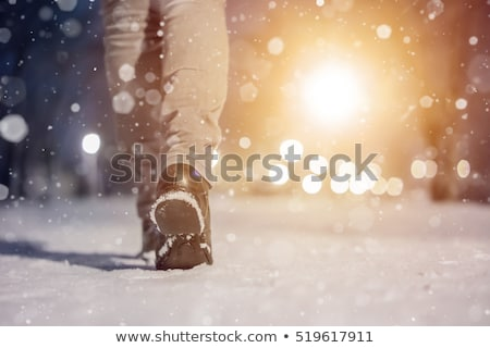 Woman at winter street under light snowfall stock photo © vetdoctor