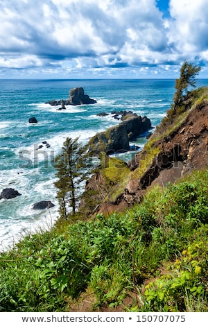 Rugged Rocky Beach on the Oregon Coast Stock photo © Frankljr
