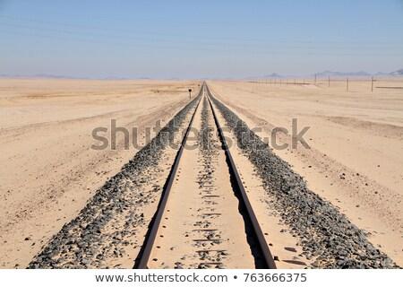 Vasút sivatag terep nyár nap égbolt Stock fotó © OleksandrO
