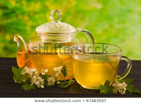 Herbal tea with hawthorn Stock photo © yelenayemchuk