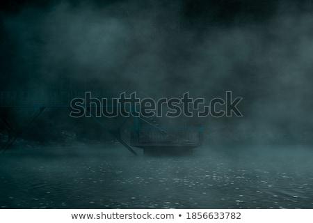 Pary jezioro lasu charakter drzew mgły Zdjęcia stock © emattil