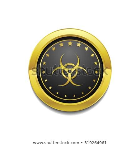 Imzalamak altın vektör ikon düğme teknoloji Stok fotoğraf © rizwanali3d