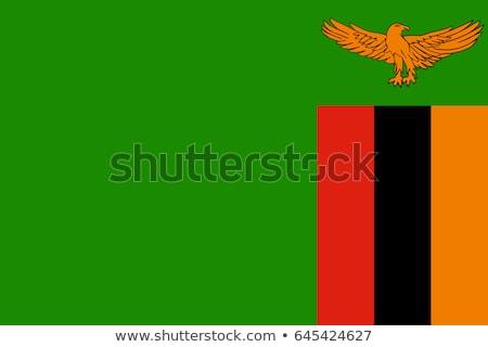 Zambia · zászló · gomb · világ · zöld · kék - stock fotó © istanbul2009